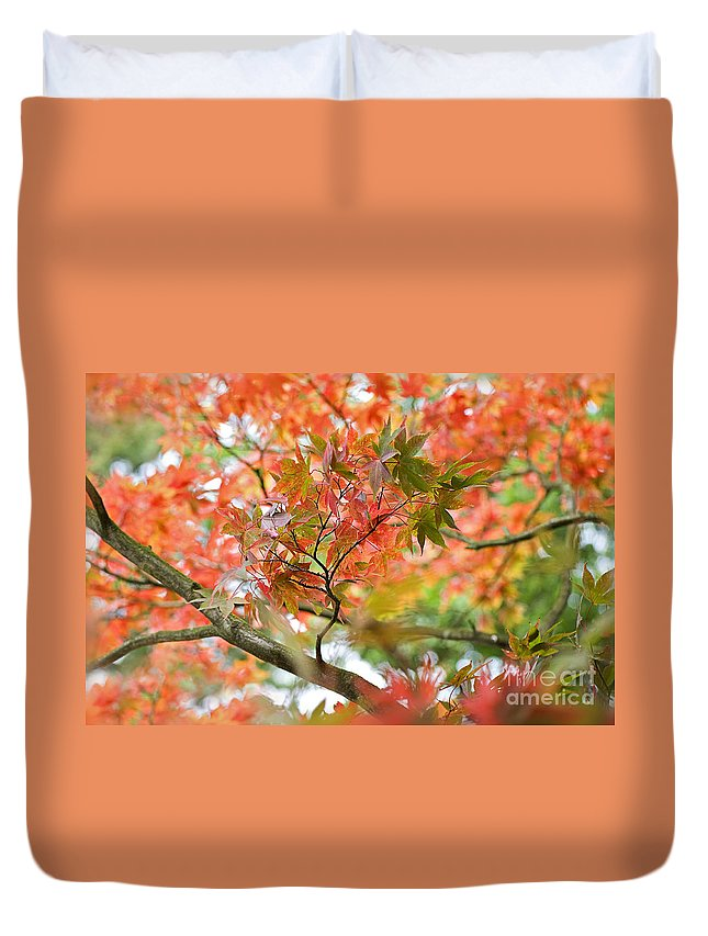 Acer Duvet Cover featuring the photograph Autumn Fire by Jacky Parker