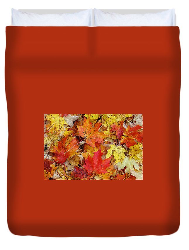 Autumn Duvet Cover featuring the photograph Autumn Leaves by Aimee L Maher ALM GALLERY