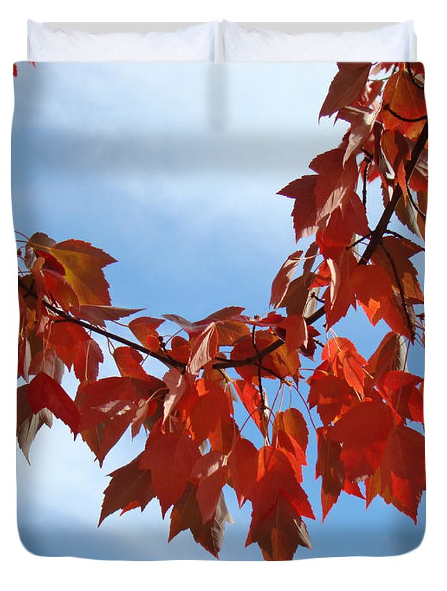 Autumn Duvet Cover featuring the photograph Autumn Leaves Tree Red Orange Art Prints Blue Sky White Clouds by Baslee Troutman