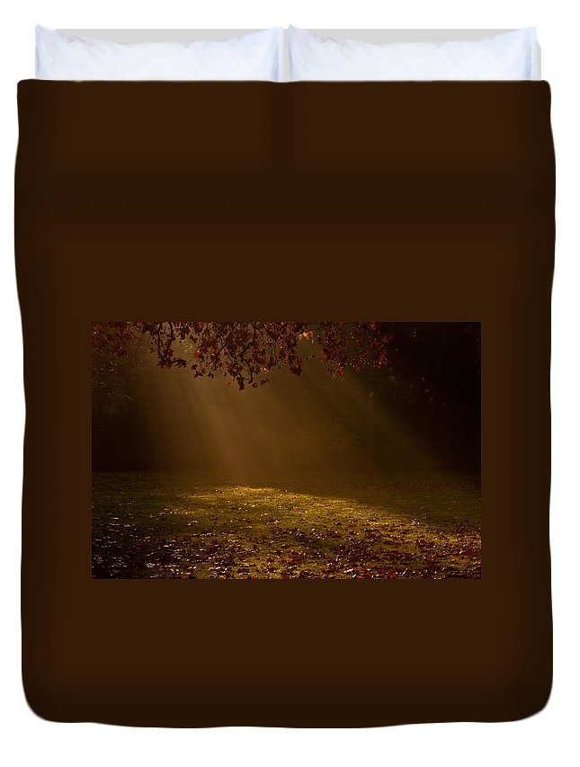 Sunlight Duvet Cover featuring the photograph Autumn Mist by Dawn OConnor