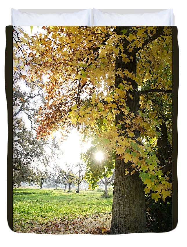 Autumn Duvet Cover featuring the photograph Autumn Sunset by Jim And Emily Bush