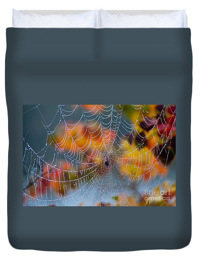 Spider Duvet Cover featuring the photograph Autumn Web by Joan McCool