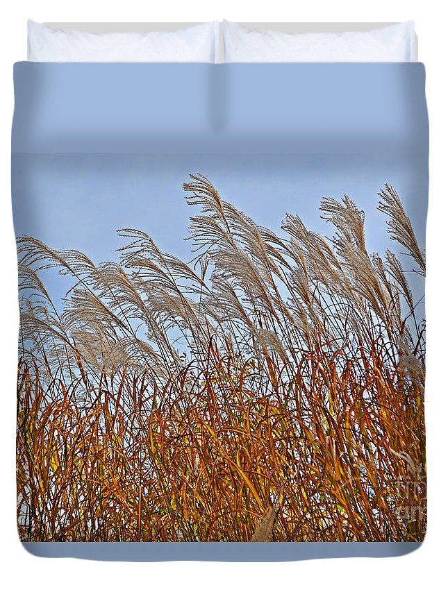 Afternoon Duvet Cover featuring the photograph Autumn Wind Through The Grass by Mary Machare