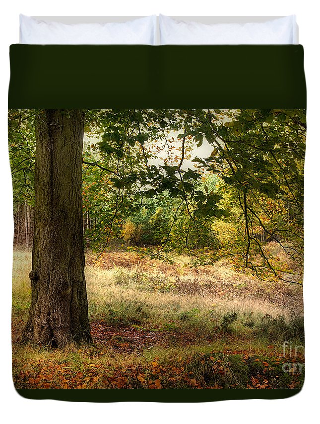 Autumn Tree Duvet Cover featuring the photograph Autumn Woodland by Ann Garrett