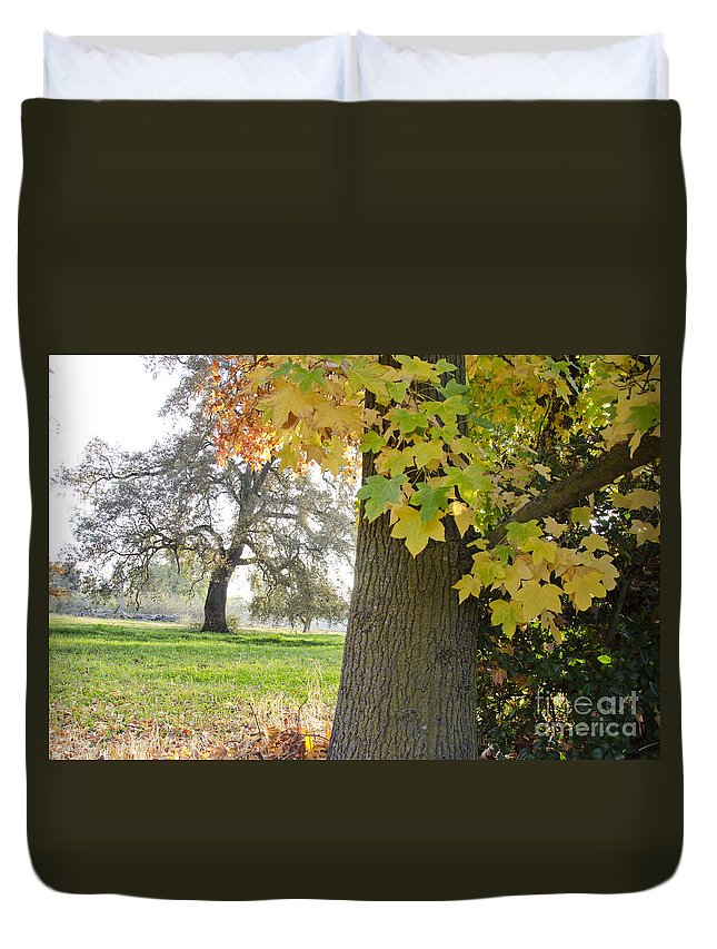 Autumn Duvet Cover featuring the photograph Autumn's Gold by Jim And Emily Bush