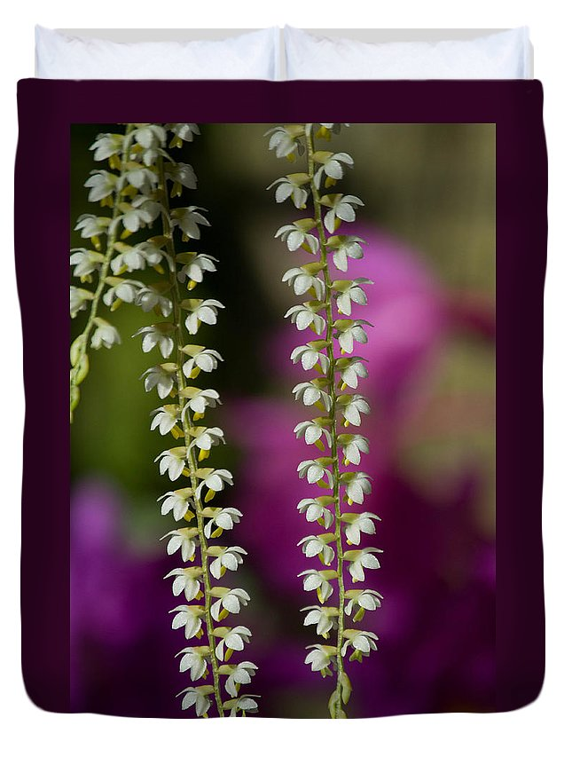 Flower Duvet Cover featuring the photograph Ava's Fragile Flower by Trish Tritz