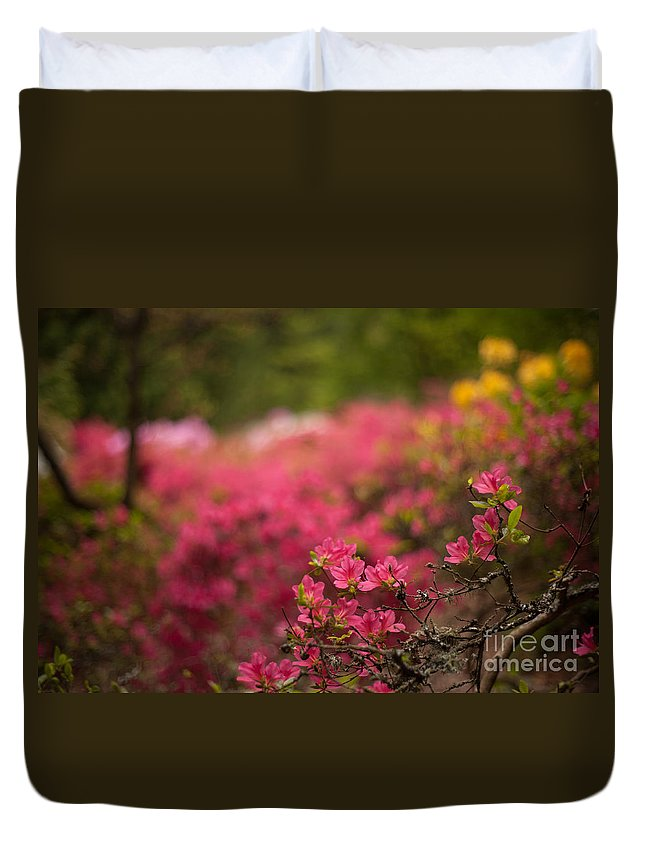 Rhodies Duvet Cover featuring the photograph Awaiting by Mike Reid