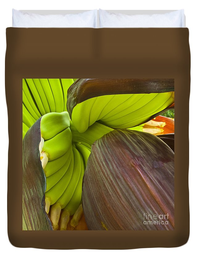 Banana Duvet Cover featuring the photograph Baby Bananas by Heiko Koehrer-Wagner