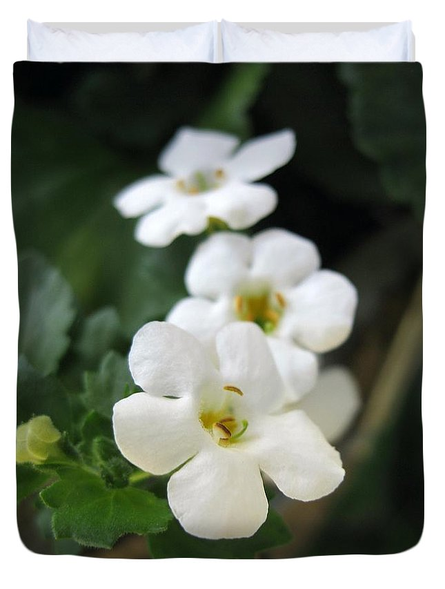 Bacopa Duvet Cover featuring the photograph Bacopa Named Snowtopia by J McCombie
