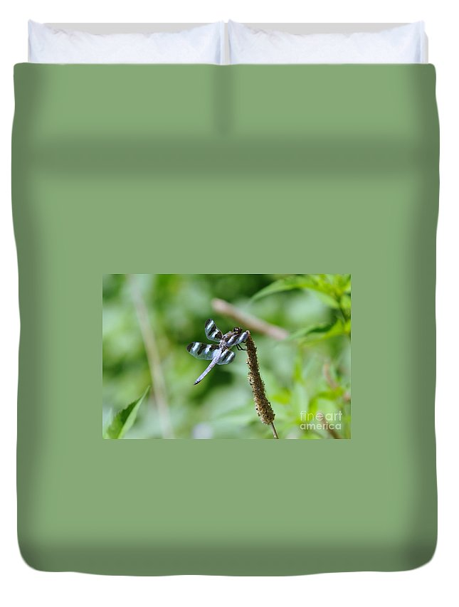 Dragonflies Duvet Cover featuring the photograph Balancing by Jeff Swan