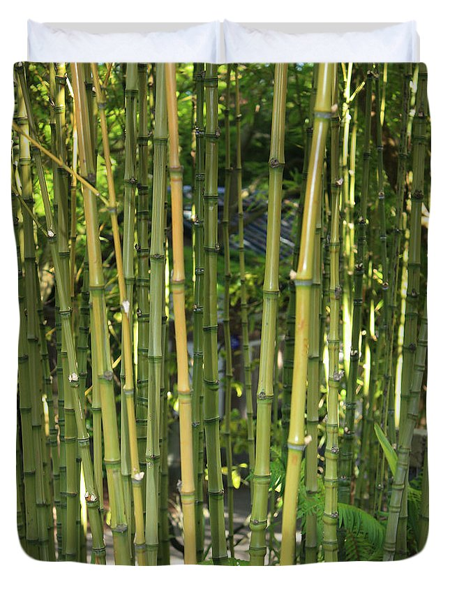 Bamboo Duvet Cover featuring the photograph Bamboo by Carol Groenen