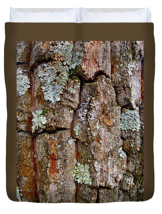 Tree Duvet Cover featuring the photograph Bark At Me by Anna Ruzsan
