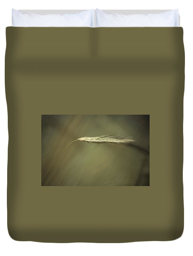 Barley Duvet Cover featuring the photograph Barley by One Rude Dawg Orcutt