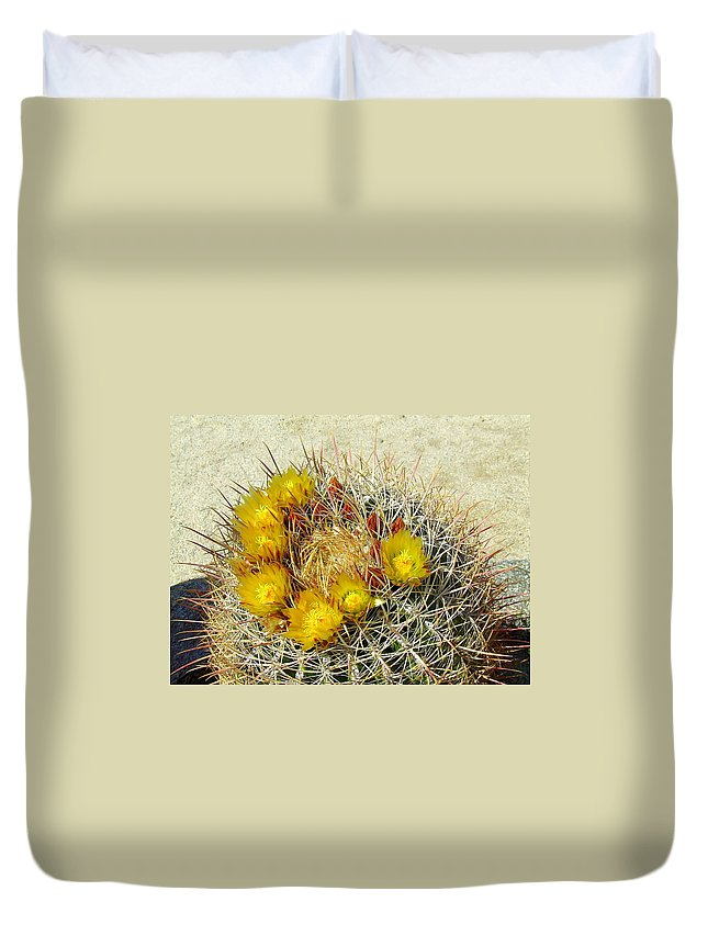 Anza Borrego Duvet Cover featuring the photograph Barrel Cactus by Christie Starr Featherstone