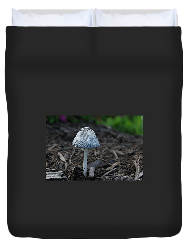 Garden Duvet Cover featuring the photograph Beach Umbrella by Guy Whiteley