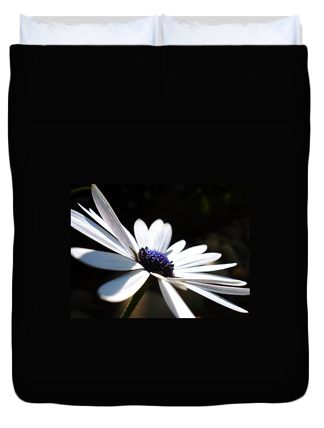 Daisy Duvet Cover featuring the photograph Beautiful Daisy by Sumit Mehndiratta