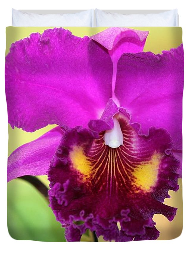Orchid Duvet Cover featuring the photograph Beautiful Hot Pink Orchid by Sabrina L Ryan