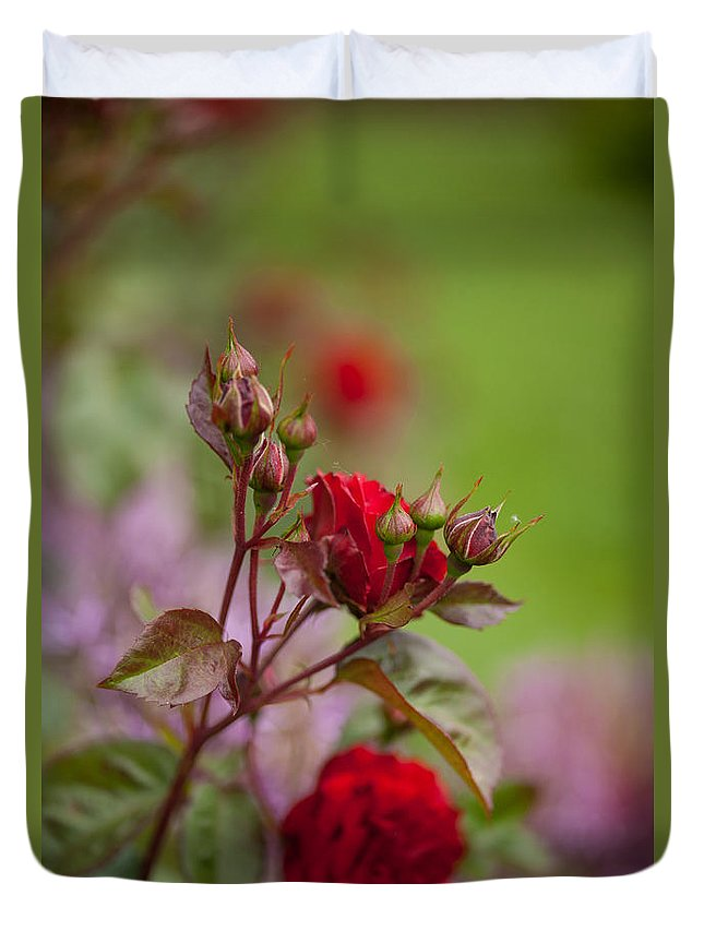 Rose Duvet Cover featuring the photograph Beautiful Spring by Mike Reid