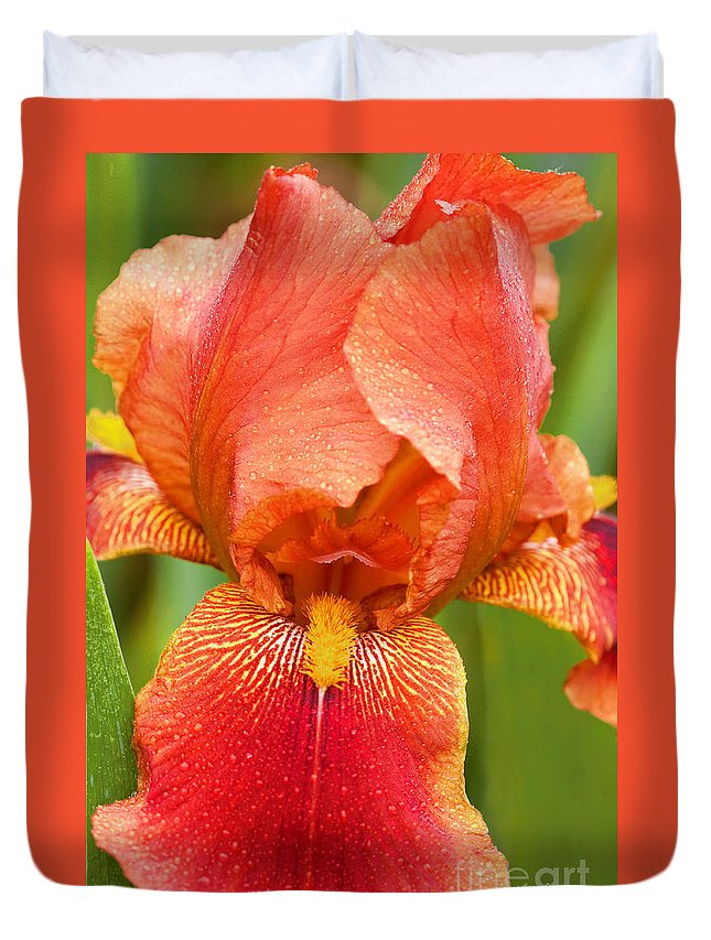 Iris Duvet Cover featuring the photograph Beauty In The Rain by Regina Geoghan
