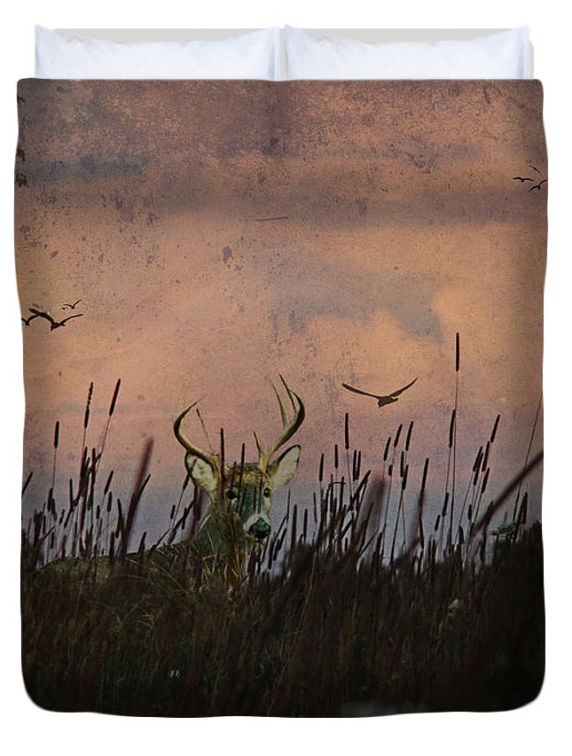 Deer Duvet Cover featuring the photograph Bedding Down For Evening by Lianne Schneider
