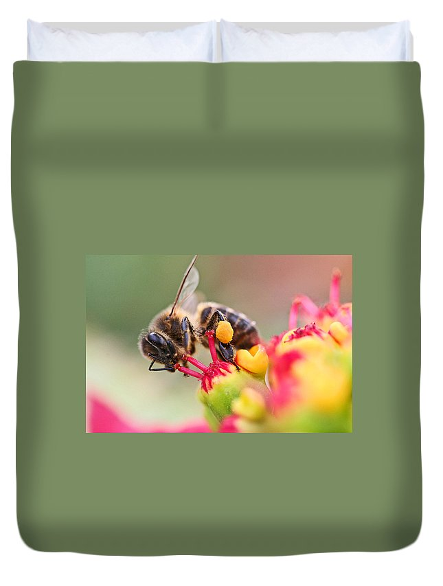 Bees Duvet Cover featuring the photograph Bee At Work by Ralf Kaiser