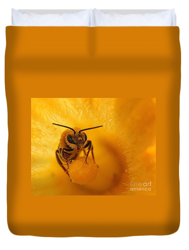 Bee Duvet Cover featuring the photograph Bee On Squash Flower by Jack Schultz