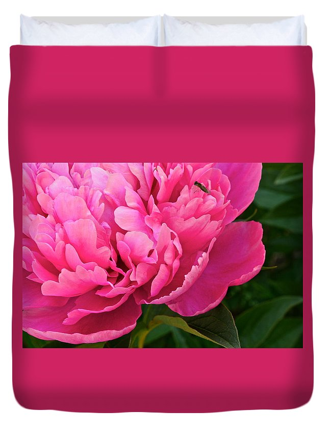 Flower Duvet Cover featuring the photograph Behold The Beauty by Frozen in Time Fine Art Photography