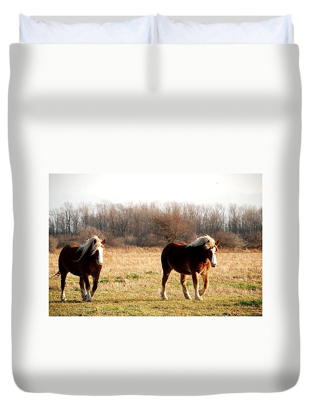 Horse Duvet Cover featuring the photograph Belgian Giants by Jacqueline Kinsey