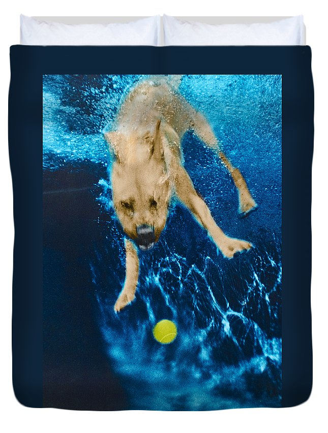 Dog Duvet Cover featuring the photograph Belly Flop by Jill Reger