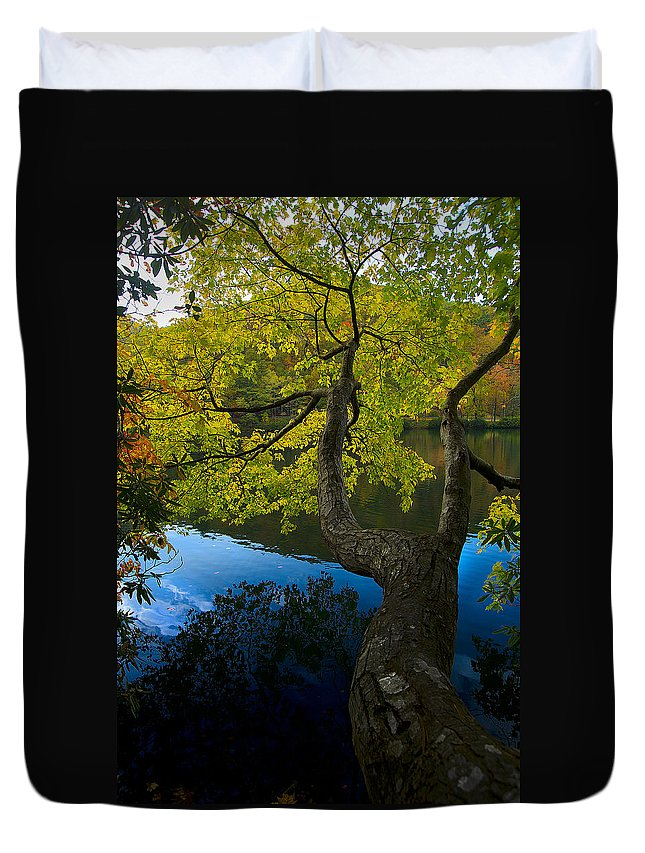 Nature Duvet Cover featuring the photograph Bent Tree by Scott Rogers