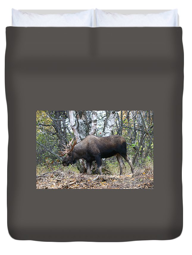 Alaska Duvet Cover featuring the photograph Big Body by Doug Lloyd