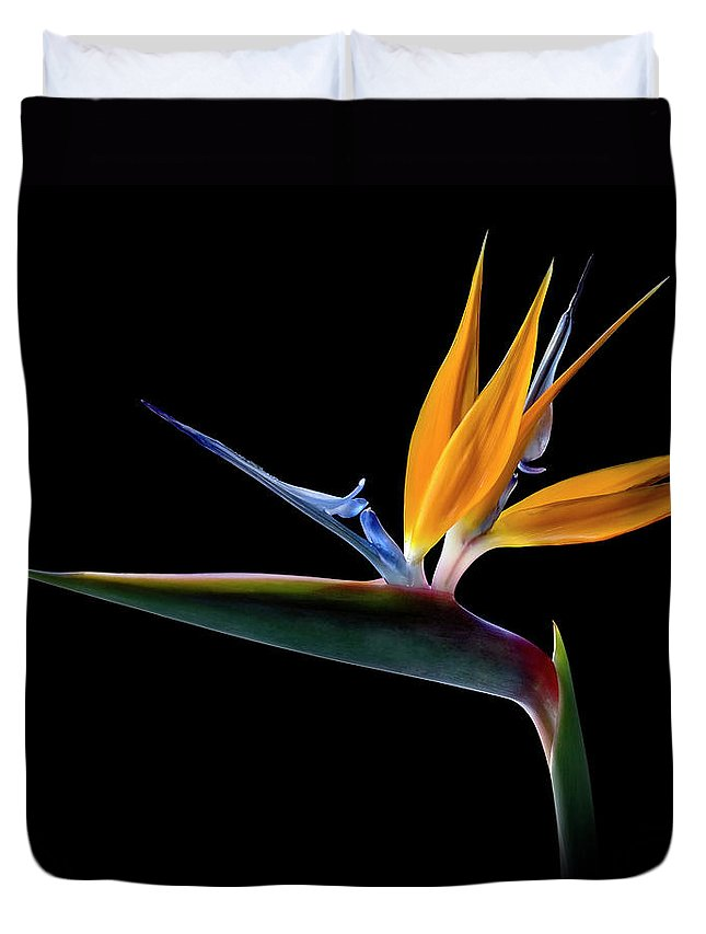 Flower Duvet Cover featuring the photograph Bird Of Paradise by Endre Balogh