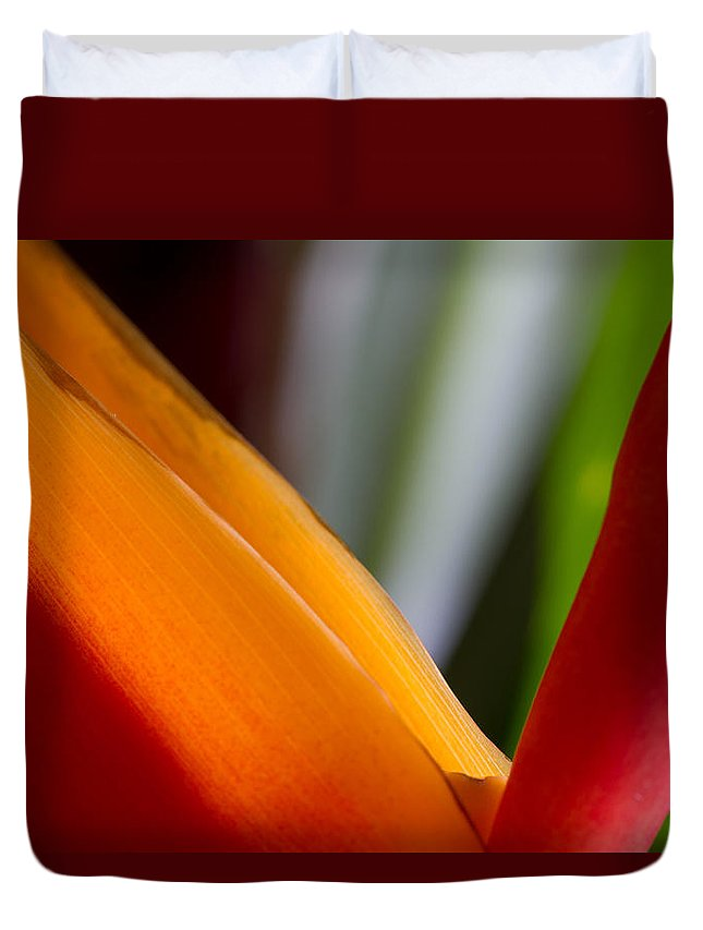 Bird Of Paradise Duvet Cover featuring the photograph Bird Of Paradise by Roger Mullenhour