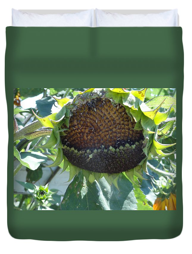 Sunflower Duvet Cover featuring the photograph Bird Seed by Shannon Grissom