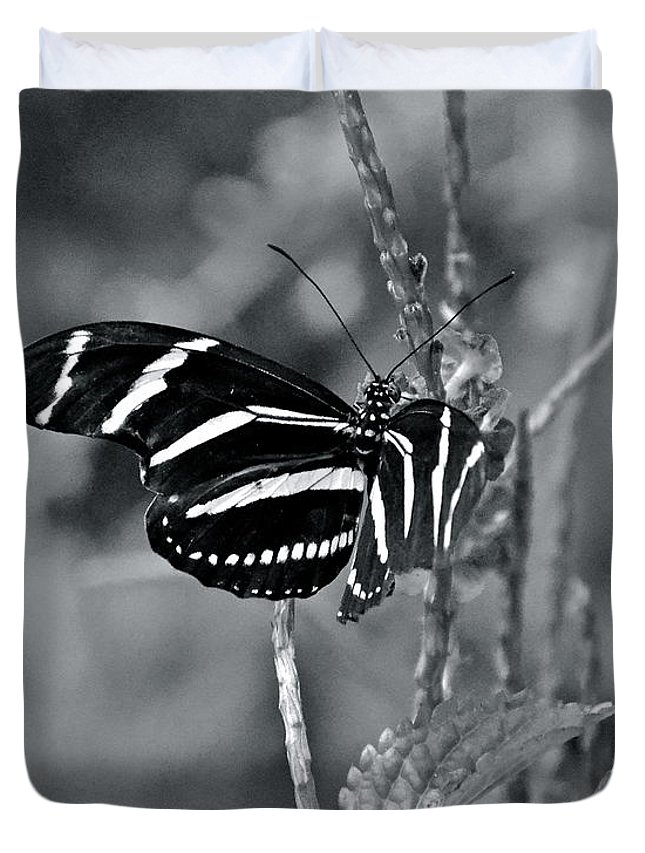 Butterfly Duvet Cover featuring the photograph Black And White Butterfly by Carol Bradley
