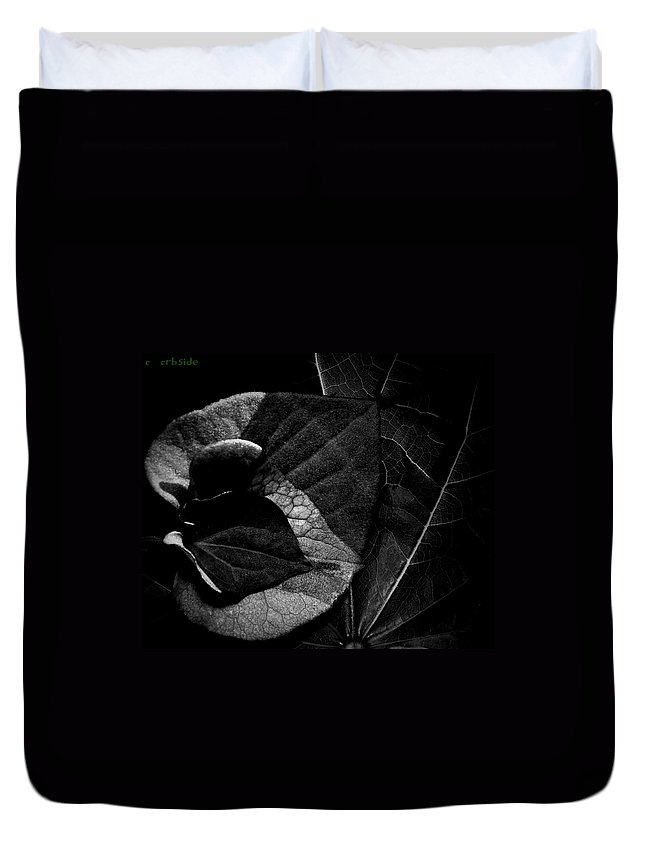 Foliage Duvet Cover featuring the photograph Black Hearts by Chris Berry