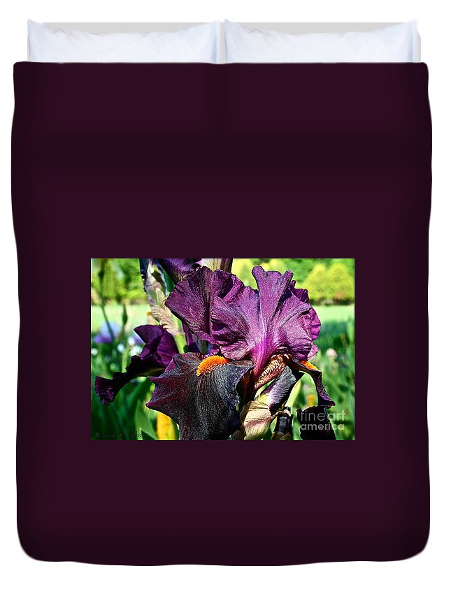 Plant Duvet Cover featuring the photograph Black Iris by Susan Herber