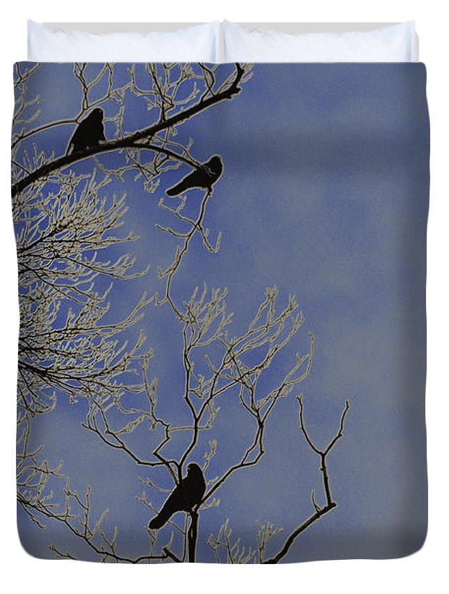 Blackbird Duvet Cover featuring the photograph Blackbirds by Bill Cannon