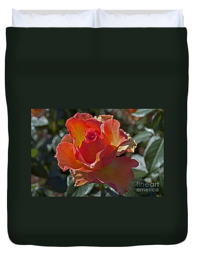 Rose Duvet Cover featuring the photograph Blessings by Gwyn Newcombe