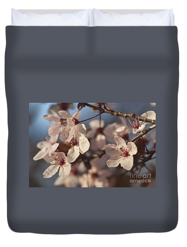 Blossom Duvet Cover featuring the photograph Blossoms by Jim And Emily Bush