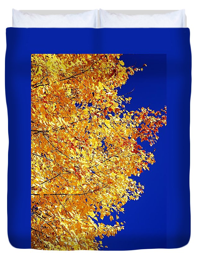 Photography Duvet Cover featuring the photograph Blue And Gold by Larry Ricker