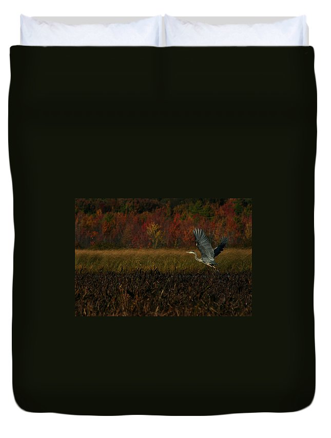 Blue Heron Duvet Cover featuring the photograph Blue Heron Mud Pond Dublin by Benjamin Dahl
