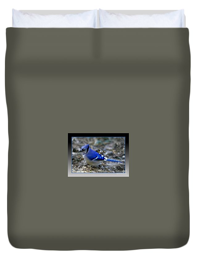 Blue Jay Duvet Cover featuring the photograph Blue Jay by Donna Bentley