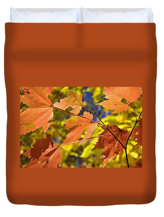 Blue Ridge Duvet Cover featuring the photograph Blue Ridge Autumn Leaves 1.0 by Bruce Gourley