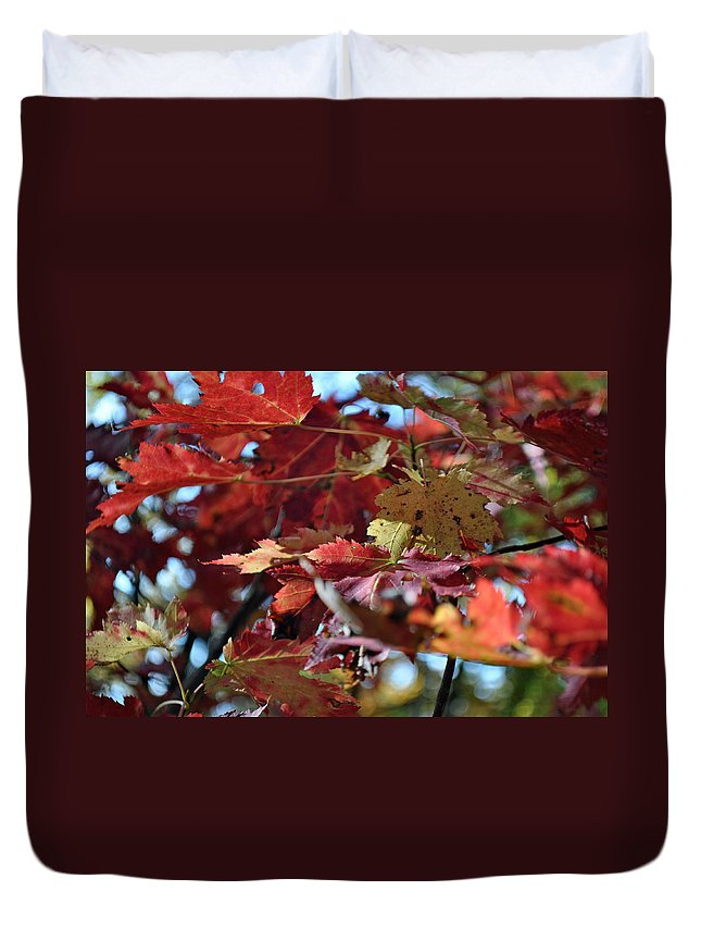 Leaves Duvet Cover featuring the photograph Blue Ridge Autumn Leaves 1.1 by Bruce Gourley