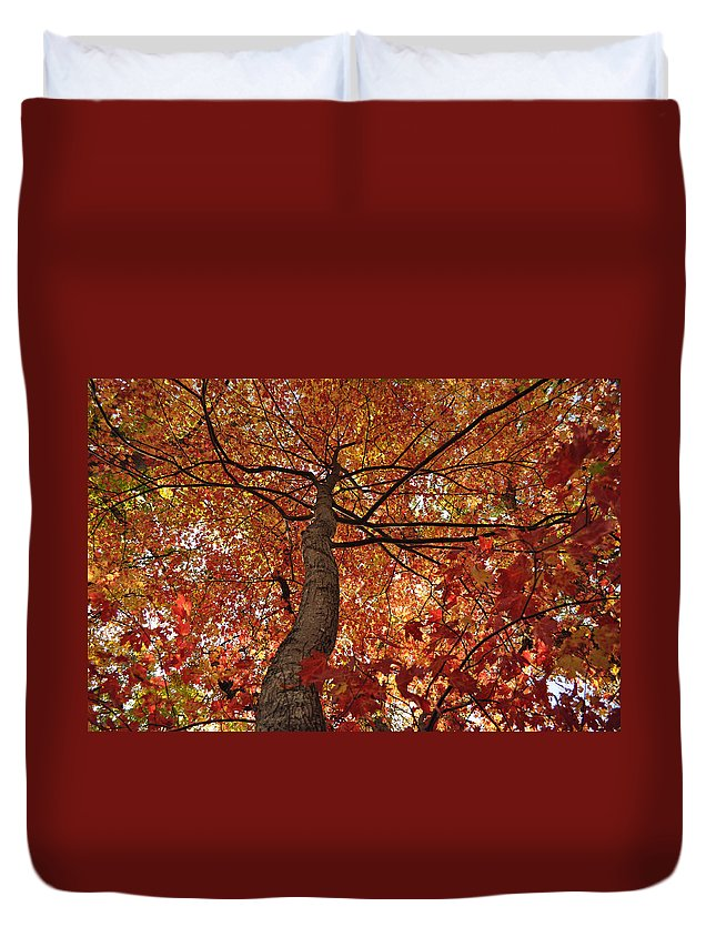 Leaves Duvet Cover featuring the photograph Blue Ridge Autumn Leaves 1.3 by Bruce Gourley
