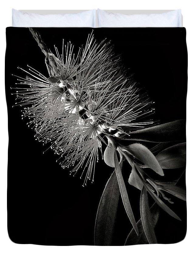 Flower Duvet Cover featuring the photograph Bottlebrush In Black And White by Endre Balogh