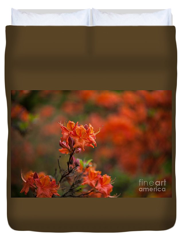 Rhodies Duvet Cover featuring the photograph Brilliantly Rouge by Mike Reid