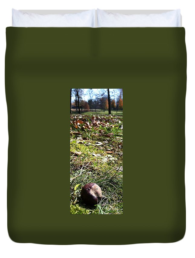 Landscape Duvet Cover featuring the photograph Buckeye Lakeview by Trish Hale