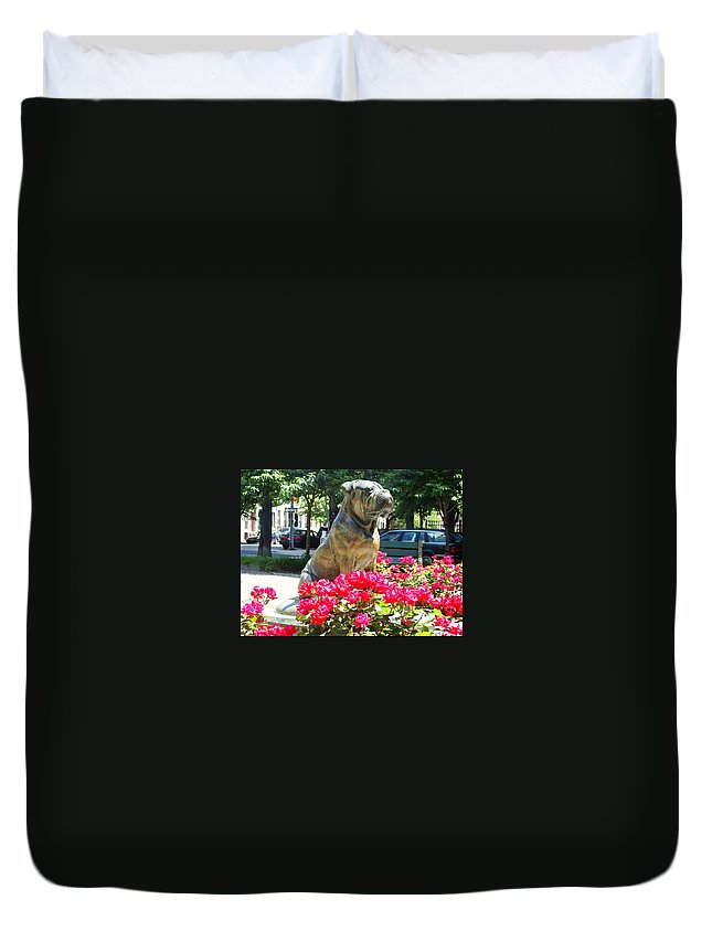 Dog Statue The Philadelphian On The Parkway Park Roses Red Philadelphia Pennsylvania Duvet Cover featuring the photograph Bud by Alice Gipson